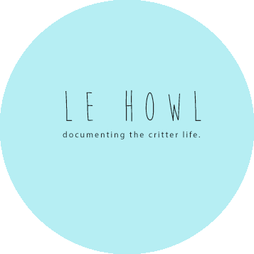 Le Howl Photography logo